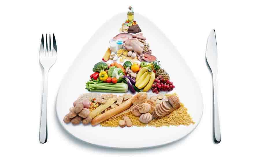 nutrisi tubuh